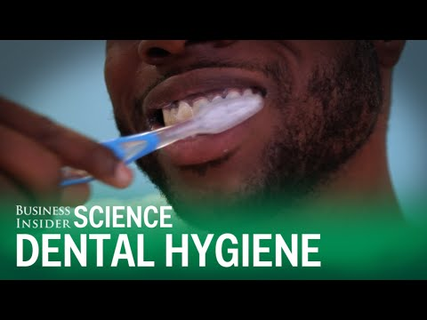 Your Toothbrush Probably Has E. Coli On It