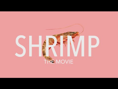 SHRIMP THE MOVIE