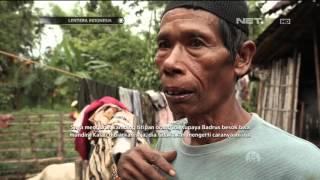 Video Lentera Indonesia - Kisah Perjuangan Laskar Insan Istimewa download MP3, 3GP, MP4, WEBM, AVI, FLV September 2019