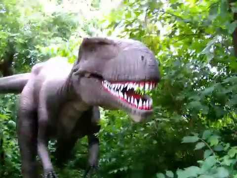 Field Station Dinosaurs Walk Around July 2, 2019