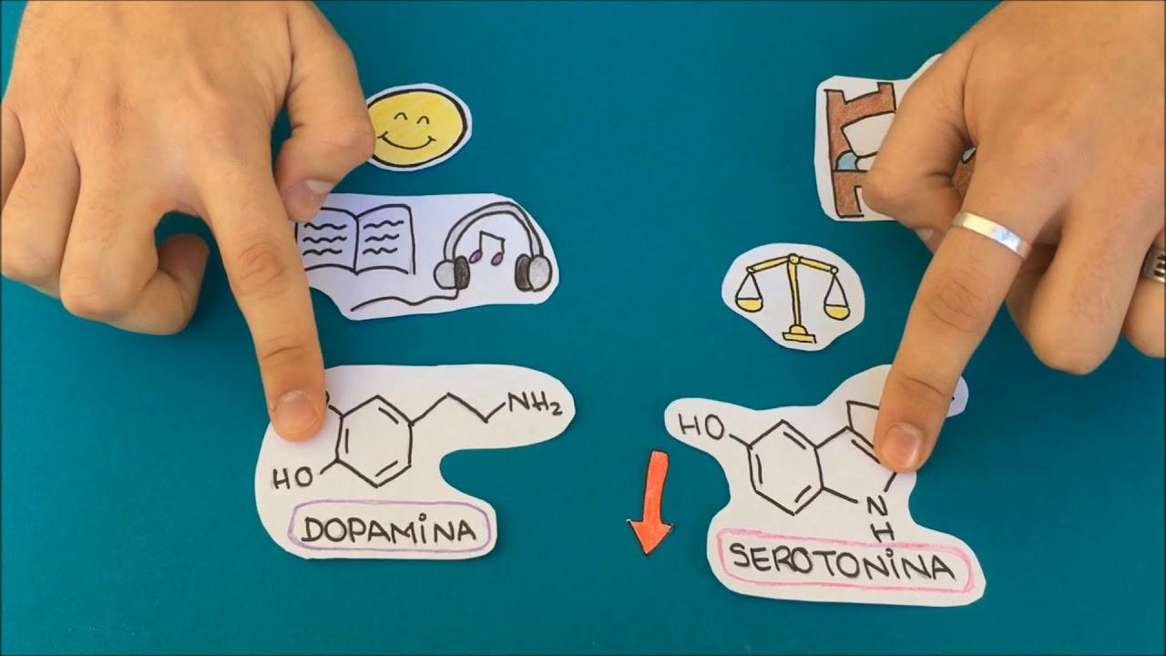 Resultado de imagen de químicos depresión