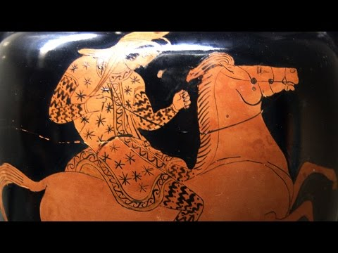 Amazons: Warrior Women in Myth, Art, and History
