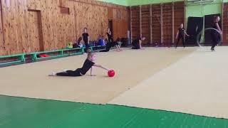 Сдача нормативов художественная гимнастика за 2017 год