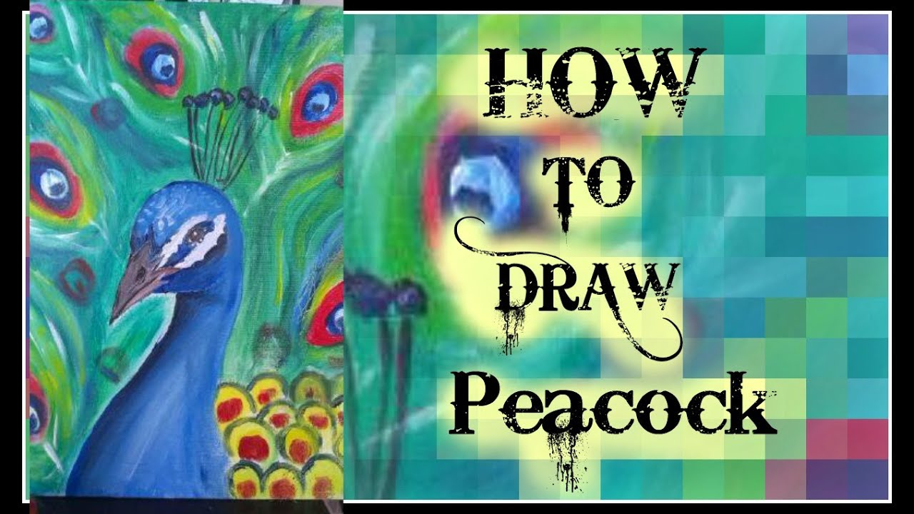 how to paint a peacock with acrylic color tutorial for beginners