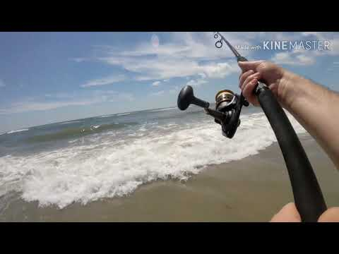 New Jersey Surf And Inlet Fishing