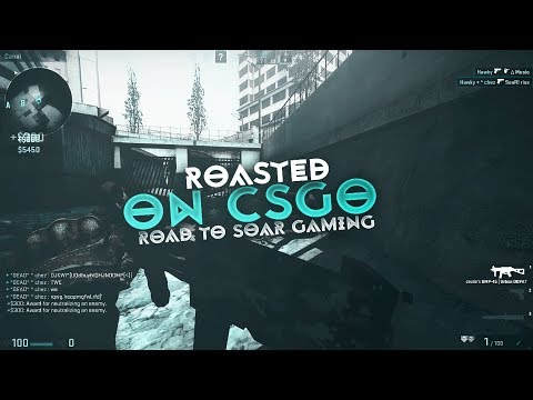 GOT ROASTED FOR PLAYING CSGO | Playing with SoaR Crudes & Riss