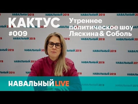 Кактус #009. Митинг #ДимонОтветит: реакция властей, суды и другие новости