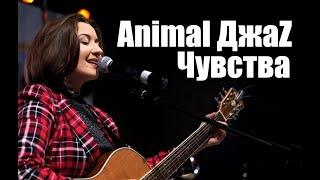 Animal ДжаZ - Чувства Время любить 2019 cover by MigamuvaАнна Михаевская