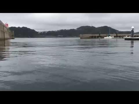 Hayama Marina New port ,Kanagawa Prefecture Japan,2675,9,18,Fri