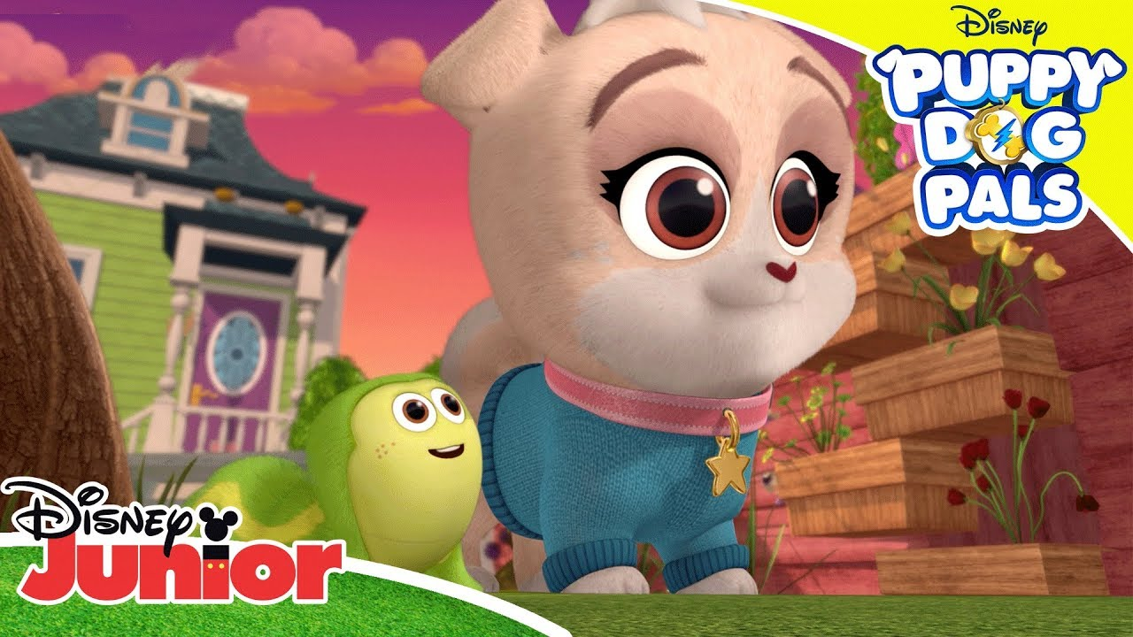 There S Always Room For Another Friend Puppy Dog Pals Disney Channel Africa Youtube