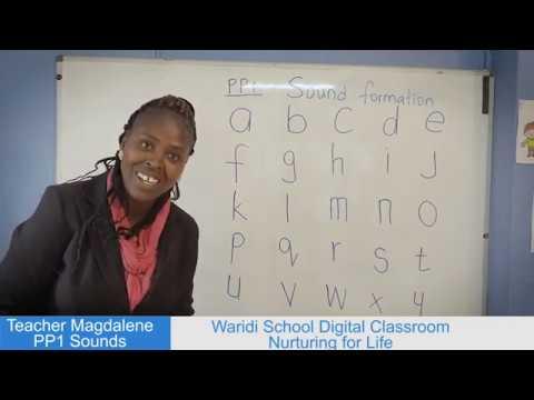 PP1 LANGUAGE LESSON - SOUND FORMATION