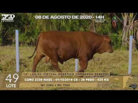 LOTE 49 CORO 2338