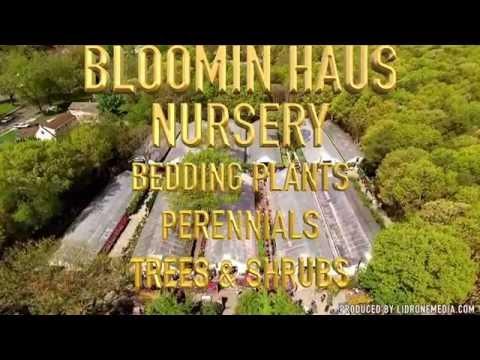 Bloomin Haus Nursery in Holtsville, NY