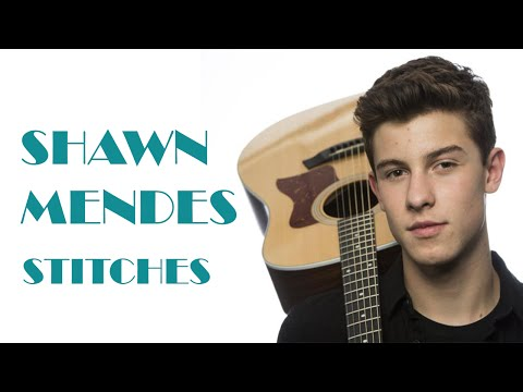 LIRIK LAGU SHAWN MENDES  STITCHES TERJEMAHAN INDONESIA