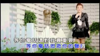 林良歡-等你電話MV