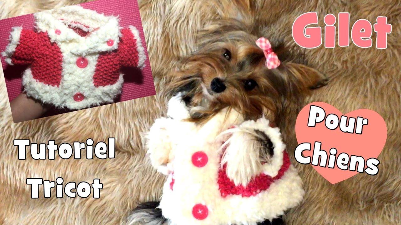 tutoriel tricot gilet pour petits chiens youtube. Black Bedroom Furniture Sets. Home Design Ideas