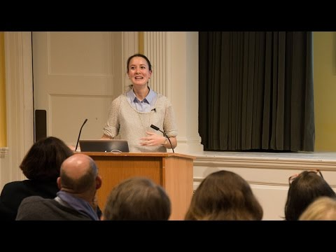 Sarah Howe | Two Systems || Radcliffe Institute
