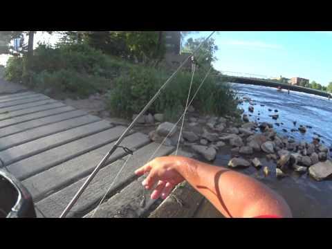 Carp Fishing In Grand Rapids MI
