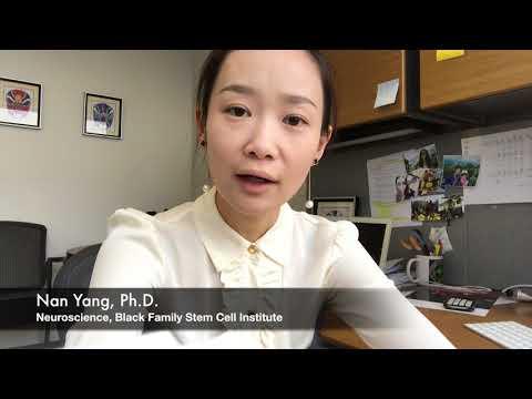 Fascitelli Scholar: Nan Yang