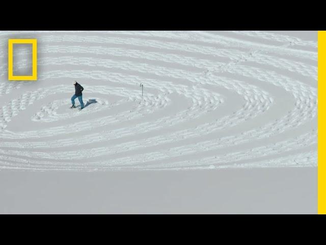 Il Cree Des Fresques Geantes En Marchant Dans La Neige Video