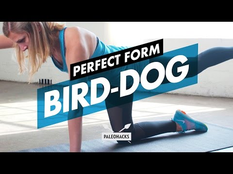 How To Do Bird-Dogs + Mistakes & Variations