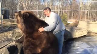クマの大きすぎる愛に包まれて。「食べちゃいたいほどすっきゃねん!」なクマの抱擁