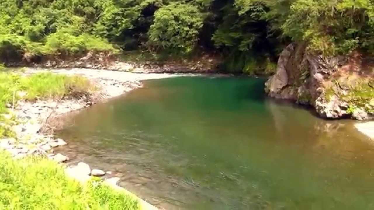 根尾川の上流① - YouTube