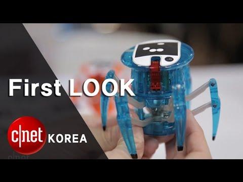 동물적 감각 살린 귀여운 거미로봇 '핵스버그 스파이더'