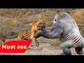 DOCUMENTALES DE ANIMALES ツ  LA HYENA DEVORA HOMBRES ANIMALES SALVAJES ATAQUE DE ANIMALES