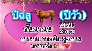 ปีฉลู-ปีวัว-ประจำเดือน-กันยายน-2563-2020-โดยคุณปภาวรินท์