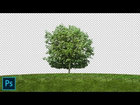 Remove Background With Channel Mask In Photoshop Cs6 Using Alpha Channel In Hindi.