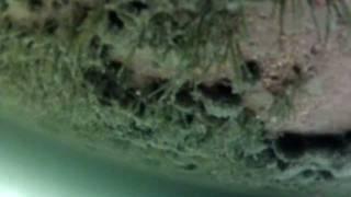 Подледные съемки на озере Таватуй. 26 февраля 2012..