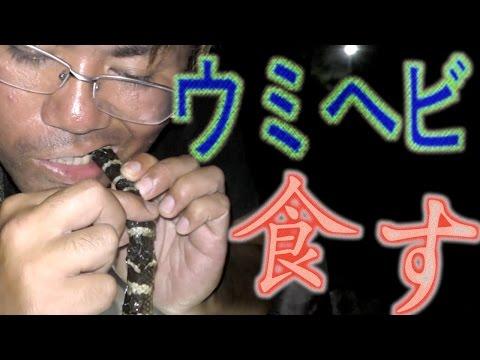 【夜の潮干狩り】所持金0円で釣り生活 10話【伊是名島編】