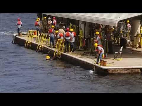 Adam's Dive at CDA