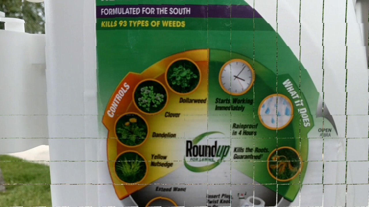 Roundup For Lawns Trial And Review Gr Remove Weeds