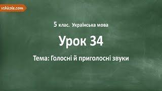 #34 Голосні й приголосні звуки. Відеоурок з української мови 5 клас