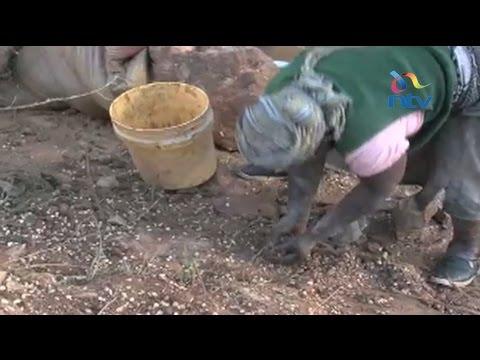 Residents scramble for cereal after accident in Kakamega