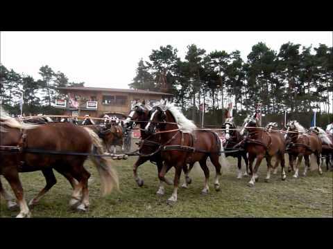 Titanen der Rennbahn 2011-Super Quadrille mit 100 Kaltblut - Pferden! 10x10 !