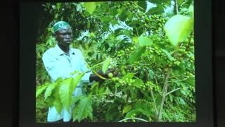 Delicious Peace: Coffee, Music and Jewish, Muslim and Christian Harmony in Uganda