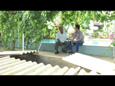 Trang trại nuôi dông + điểm tin