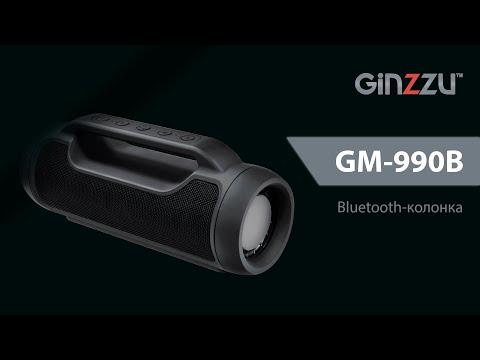 Обзор Ginzzu GM-990B