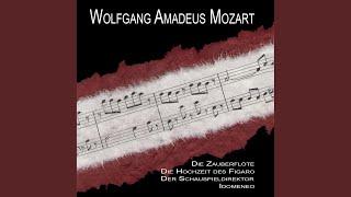 The Magic Flute Koenigin Der Nacht Der Hoelle Rache