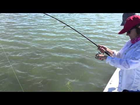 Big Redfish Catch At Redfish Lodge, Copano Bay, Texas (Raw Video)