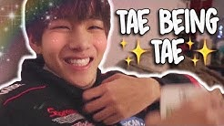 tae being tae for 10 minutes straight