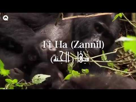 Fiha  arabic song  latest 2018