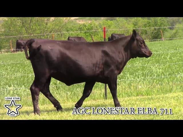 AGC Lonestar Elba 711