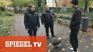 Hundekontrollen in Berlin: Ordnungsamt vs. Vierbeiner