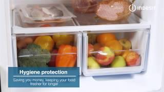 indesit ncaa55 fridge freezer