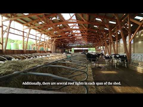 Farm Buildings: French dairy shed for 70 cow herd