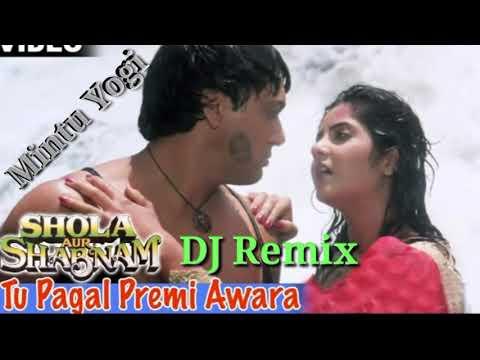 Tu Pagal Premi Awara (Dholki Mix) Hard Remix / Mintu Mixing Point